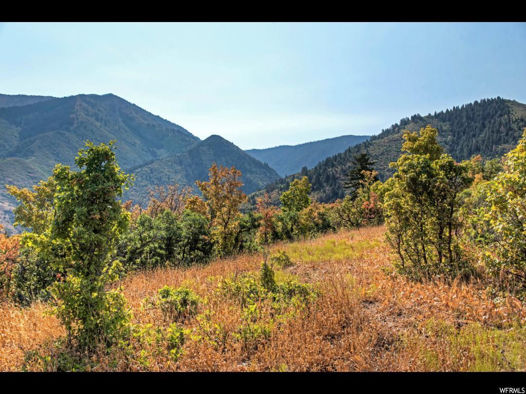 , Elk Ridge UT 84651