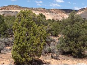 Terrain pour l Vente à 1583 E COUGAR DRAW Road Boulder, Utah 84716 États-Unis