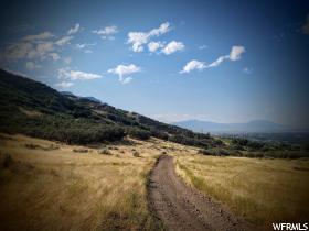 土地 为 销售 在 5500 N CANYON Road 普若佛, 犹他州 84601 美国