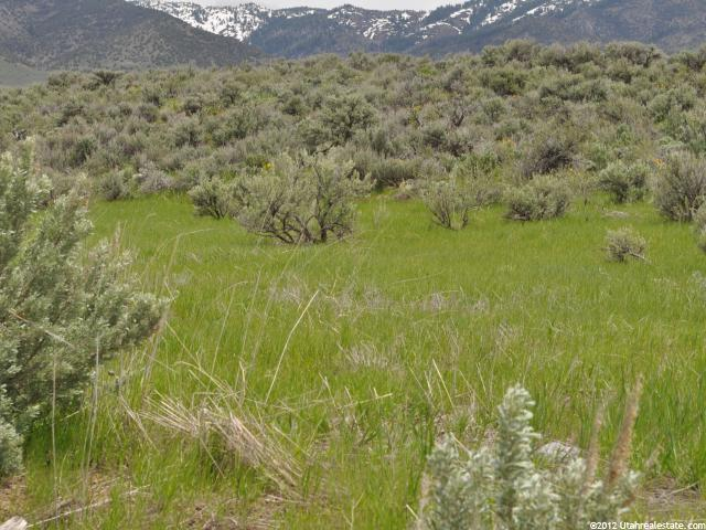 Great piece of property for hunting on the St. John bench, adjacent to National Forest.  420 acres in CRP with a $14,500 payment, 559 acres total.  Outstanding views of the Elkhorn Mountains and the whole Malad Valley.