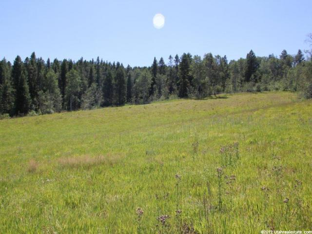 Additional photo for property listing at 11 STOCK Lane  Wayan, Idaho 83285 États-Unis