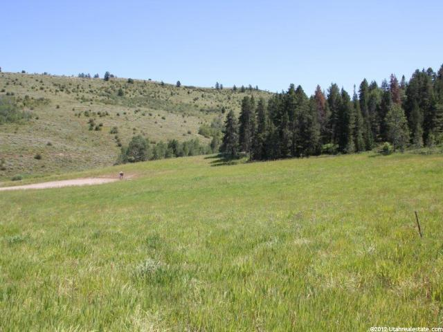 Additional photo for property listing at 11 STOCK Lane 11 STOCK Lane Wayan, Idaho 83285 United States