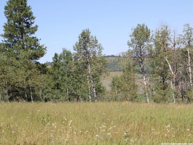 13 ELK WATCH LN Wayan, ID 83285 - MLS #: 1112854