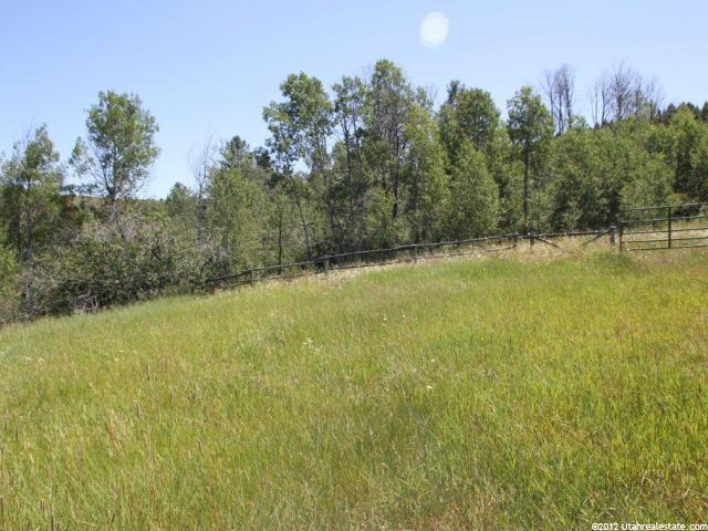 Additional photo for property listing at 13 ELK WATCH Lane 13 ELK WATCH Lane Wayan, Idaho 83285 United States
