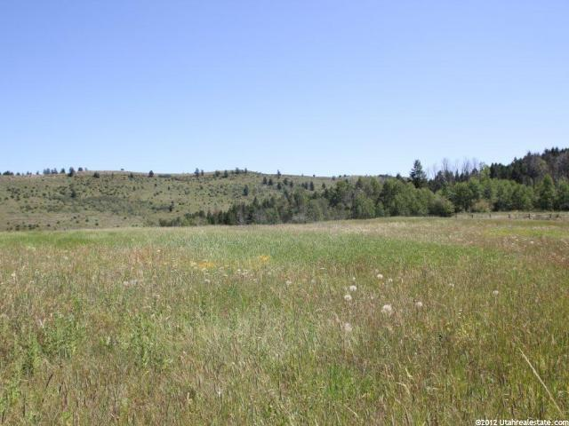 15 ELK WATCH LN Wayan, ID 83285 - MLS #: 1112856