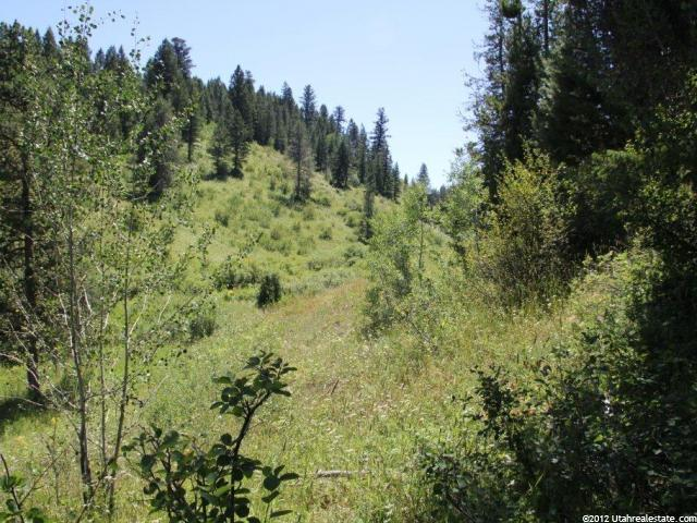 17 STILL WATER LN Wayan, ID 83285 - MLS #: 1112909