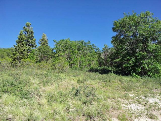 Additional photo for property listing at 859 E JUNIPER Drive 859 E JUNIPER Drive Fairview, Utah 84629 United States