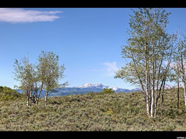 7367 E FOREST #29 CRK Woodland, UT 84036 - MLS #: 1141991