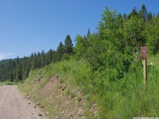 52 N STILL WATER Wayan, ID 83285 - MLS #: 1175190