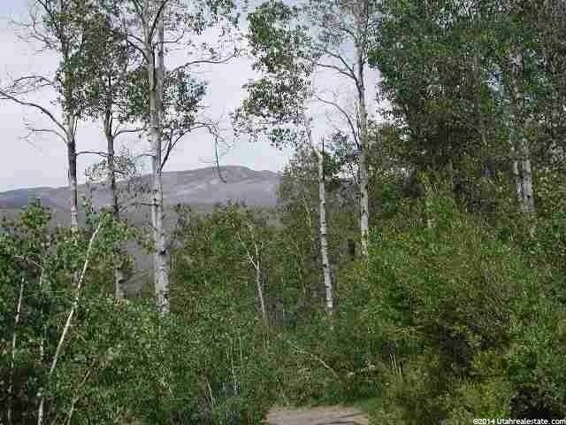 28 29 BRIDGE HOLLOW RD Woodland, UT 84032 - MLS #: 1228436
