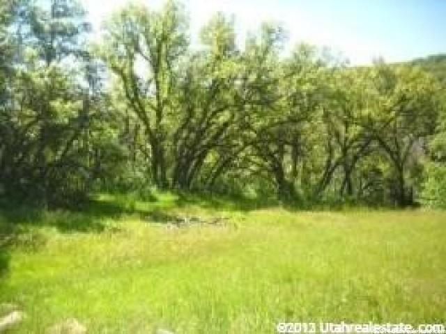 32 N HIDE AWAY CIR E Springville, UT 84663 - MLS #: 1232561
