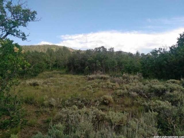 232 N WHISPERING PINES DR Mount Pleasant, UT 84647 - MLS #: 1244398