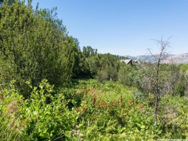 2522 N NORDIC VALLEY DR Eden, UT 84310 - MLS #: 1245546