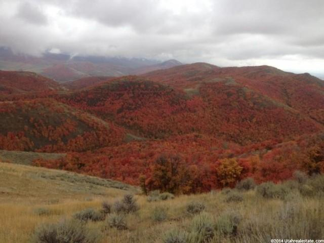 Land for Sale at 1000 SPRING CREEK Road Preston, Idaho 83263 United States