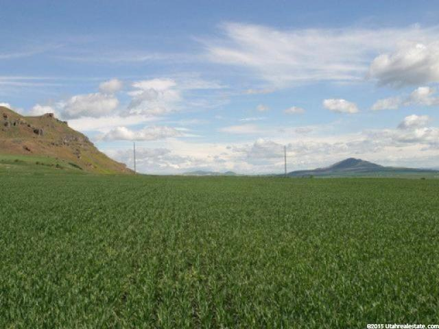 Additional photo for property listing at 6855 W 2700 N 6855 W 2700 N Petersboro, Utah 84325 États-Unis