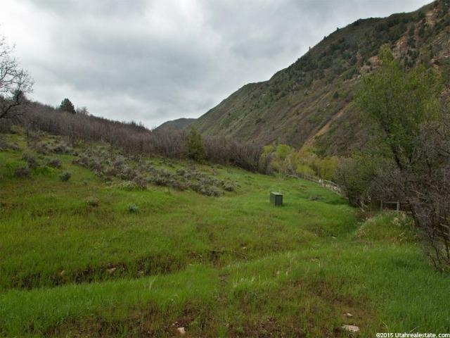 466 S HOBBLE CREEK CYN Springville, UT 84663 - MLS #: 1278908