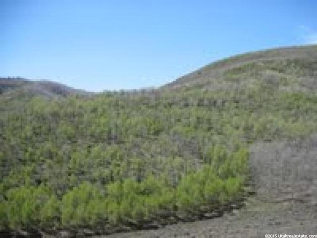 Additional photo for property listing at 1 W WOODS CANYON Road  Scofield, Utah 84526 Estados Unidos