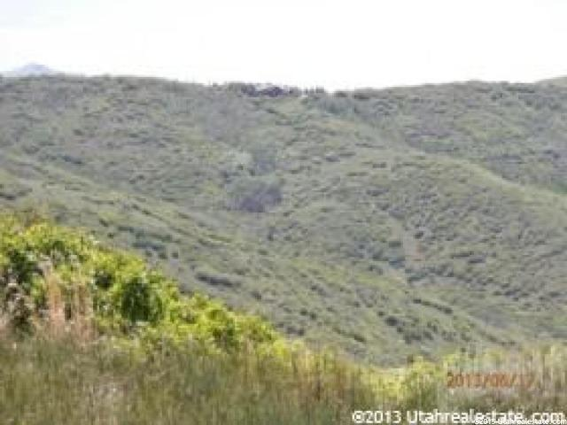 Additional photo for property listing at 80 N RIDGETOP  Wanship, Utah 84017 Estados Unidos