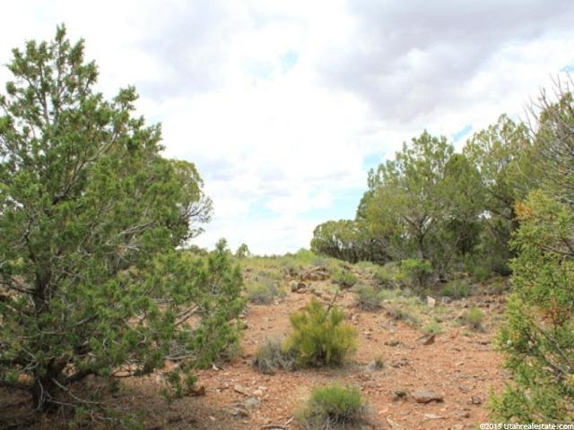 1 W BROWNS HOLE RD Moab, UT 84532 - MLS #: 1299328