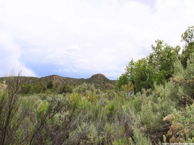 1 E BROWNS HOLE RD Moab, UT 84532 - MLS #: 1299333