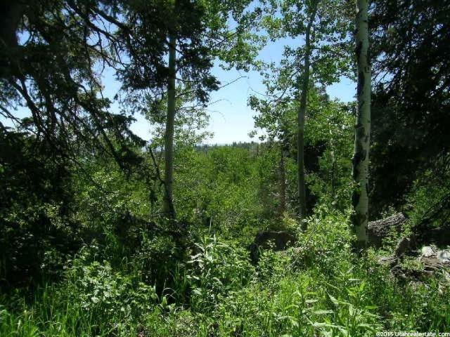 2264 S FOREST MEADOW RD. RD S Wanship, UT 84017 - MLS #: 1299965