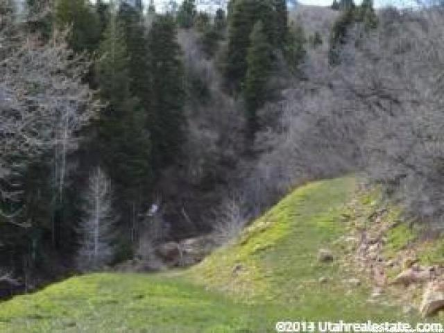 Additional photo for property listing at Address Not Available  Springville, Utah 84663 United States