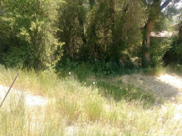 Additional photo for property listing at Address Not Available  Fish Haven, Idaho 83287 États-Unis