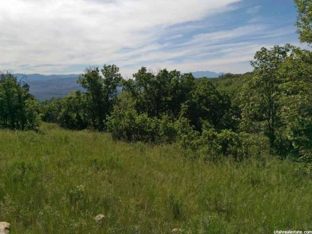 19 S HIGH BENCH RD E Fairview, UT 84629 - MLS #: 1310490