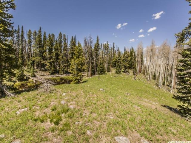 3397 MONVISO LOT 28 TRL Kamas, UT 84036 - MLS #: 1310602