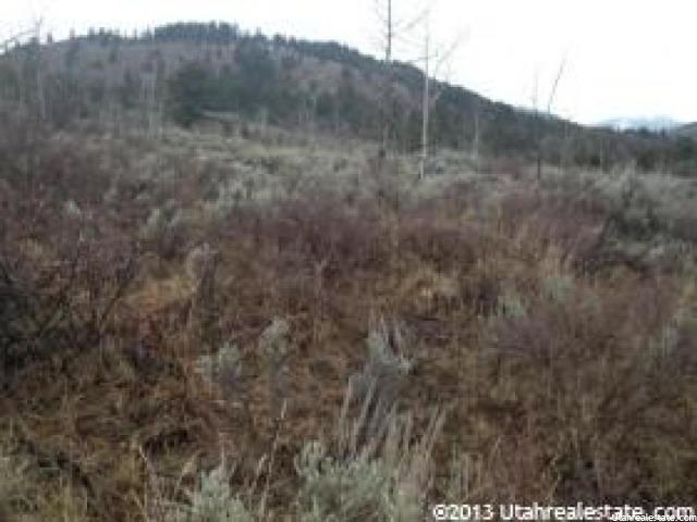 Additional photo for property listing at 95 CREEK Drive 95 CREEK Drive Georgetown, Idaho 83239 Estados Unidos