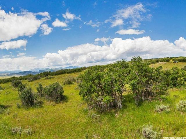 6028 N MAPLE RIDGE TRL Oakley, UT 84055 - MLS #: 1317116