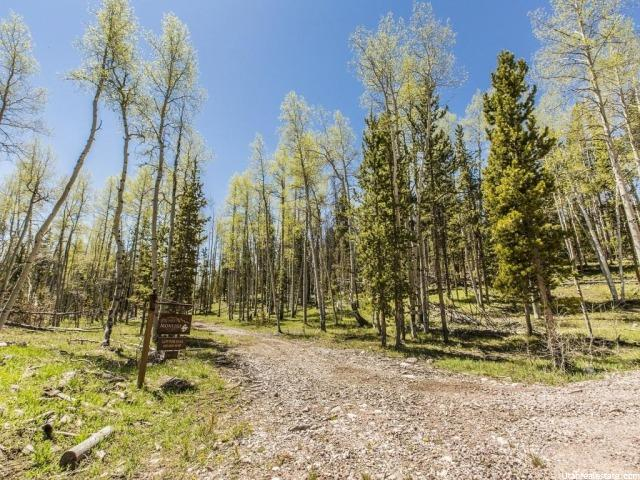 Additional photo for property listing at 767 N MONVISO LOT 2 E Trail  Kamas, Utah 84036 États-Unis