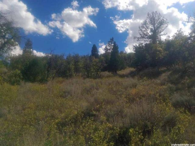 Additional photo for property listing at 446 N CANYON VIEW DRIVE Drive 446 N CANYON VIEW DRIVE Drive Indianola, Utah 84629 États-Unis