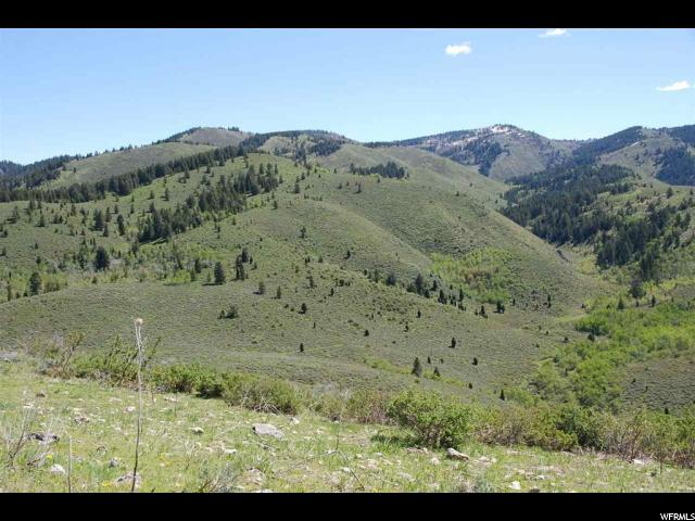 897 N FOSSIL CANYON RD Georgetown, ID 83239 - MLS #: 1323360