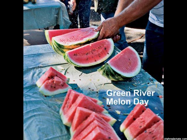 245 E FARRER ST Green River, UT 84525 - MLS #: 1325776