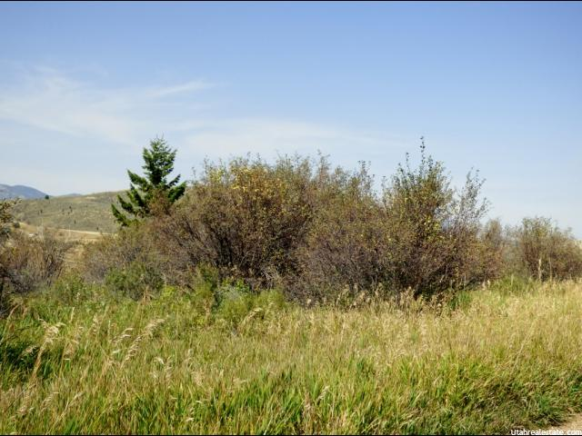 143 CITATION CT Soda Springs, ID 83276 - MLS #: 1326602