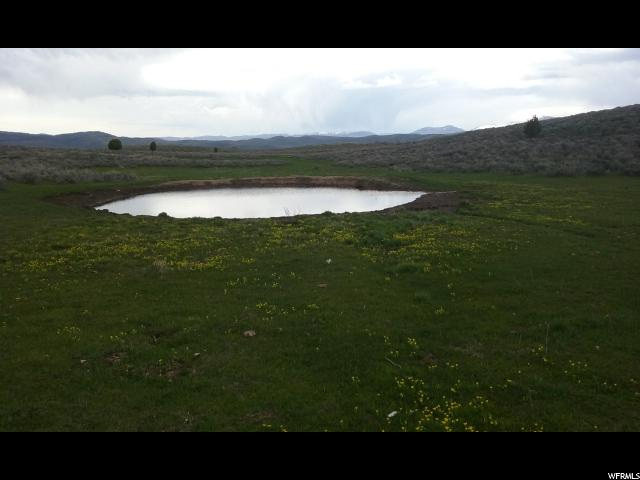 123 MILES CANYON RD Montpelier, ID 83254 - MLS #: 1336096