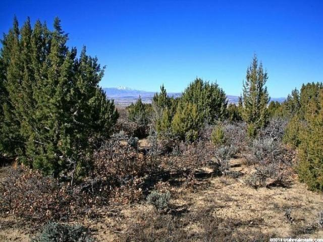 5 N HORSESHOE MOUNTAIN RNCH Spring City, UT 84662 - MLS #: 1337556