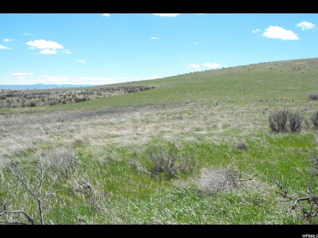 55 E LITTLE VALLEY RD Montpelier, ID 83254 - MLS #: 1342416