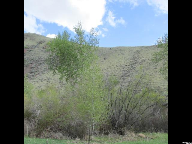 土地 为 销售 在 49 WARM SPRINGS Road Salmon, 爱达荷州 83467 美国
