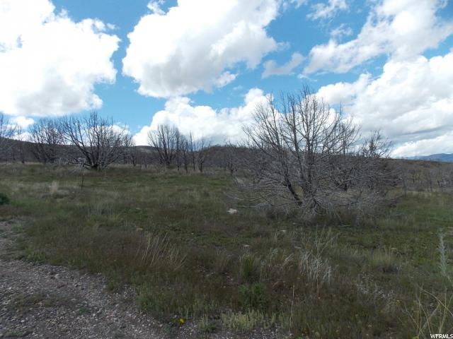 Additional photo for property listing at 33600 N 6200 E 33600 N 6200 E Indianola, Utah 84629 Estados Unidos