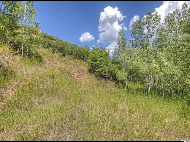 1061 N KILLYONS LN Emigration Canyon, UT 84108 - MLS #: 1357191