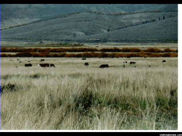 Land for Sale at W SCOFIELD W SCOFIELD Scofield, Utah 84526 United States