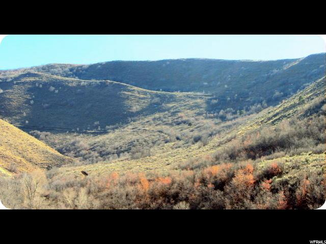 283 FRY HOLLOW RD Morgan, UT 84050 - MLS #: 1360461