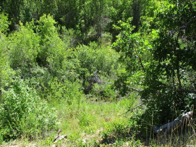 Terrain pour l Vente à 14500 E 19500 N Mount Pleasant, Utah 84647 États-Unis