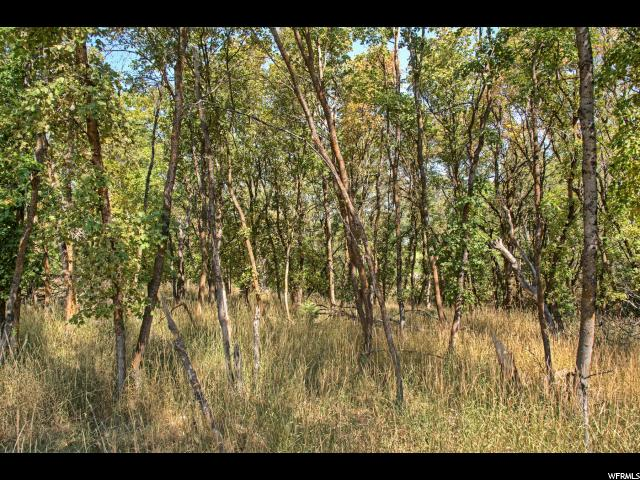 1225 S EAGLE NEST DR Woodland Hills, UT 84653 - MLS #: 1368185