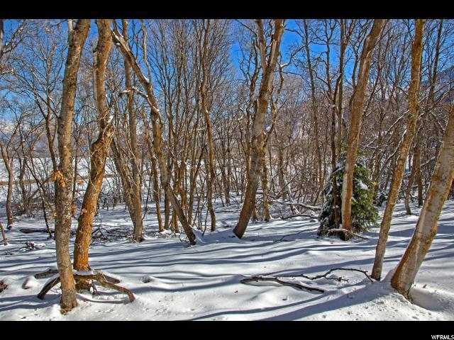 1225 S EAGLE NEST DR Woodland Hills, UT 84653 - MLS #: 1368185