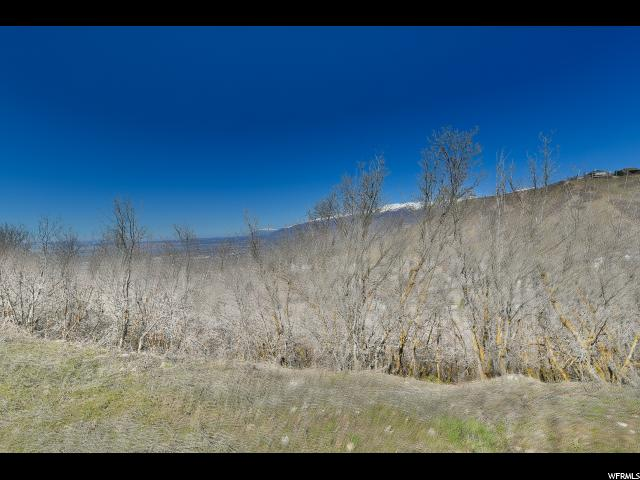 Additional photo for property listing at 925 E HIGHLAND OAKS Drive 925 E HIGHLAND OAKS Drive Bountiful, Юта 84010 Соединенные Штаты