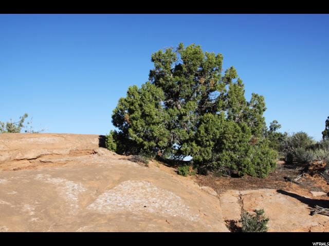 Additional photo for property listing at 2162 NAVAJO HTS 2162 NAVAJO HTS 摩押, 犹他州 84532 美国