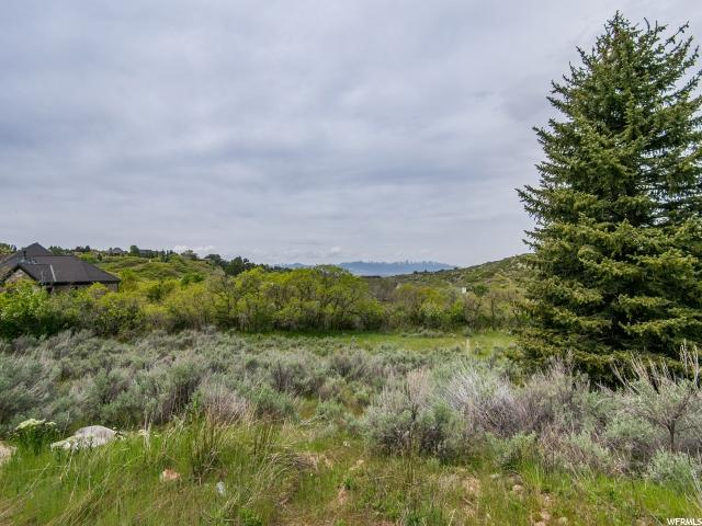 Additional photo for property listing at 3028 E OLD DIMPLE DELL FARM Lane  Sandy, Utah 84092 Estados Unidos